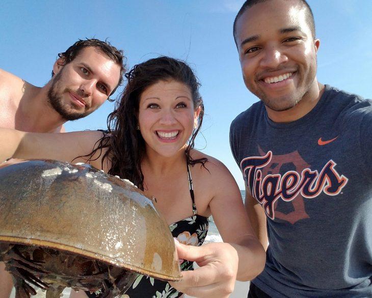 Long Beach New York Horseshoe Crab