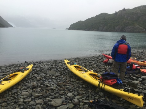 Aialik Bay Kayaking