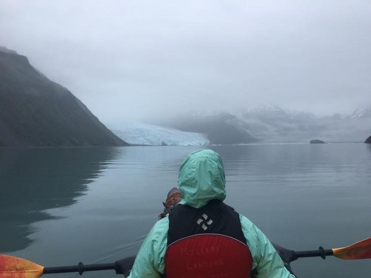 Aialik Bay Kayaking
