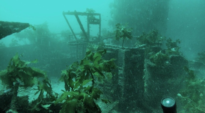 Deep Sea Shipwreck in the Bay of Islands of New Zealand!