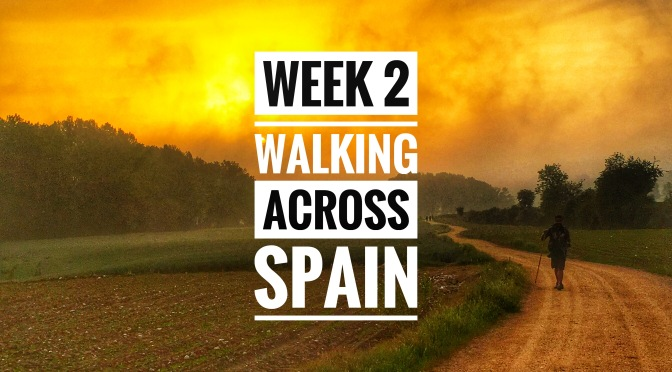 Walking Across Spain (El Camino de Santiago): Week 2