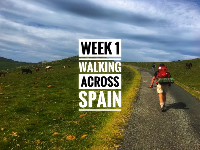 Walking Across Spain (El Camino de Santiago): Week 1