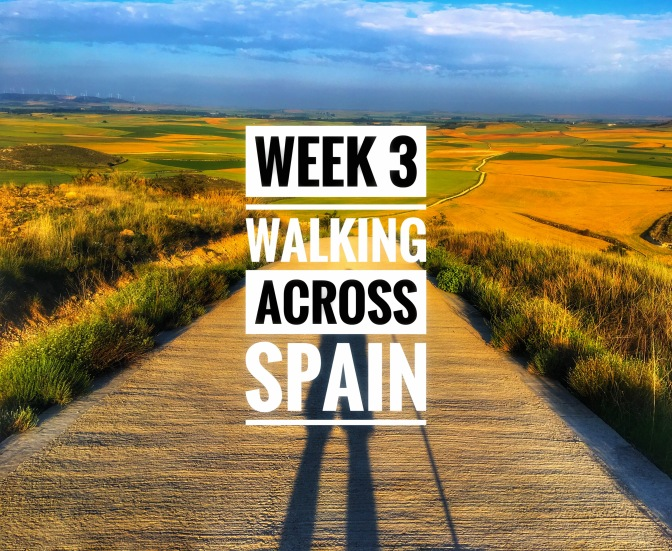 Walking Across Spain (El Camino de Santiago): Week 3