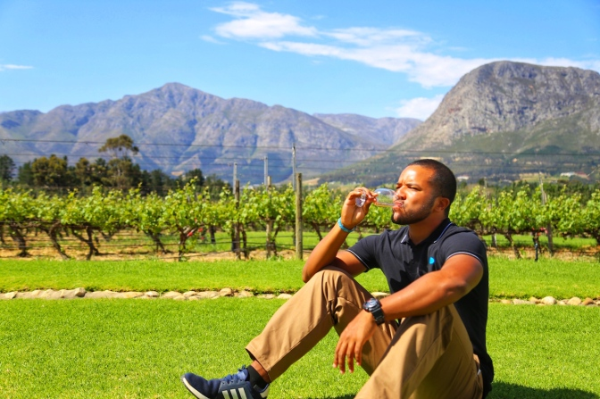 All The Reasons Why South Africa Is The Perfect Place To Wine